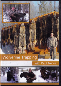 Wolverine Trapping DVD
